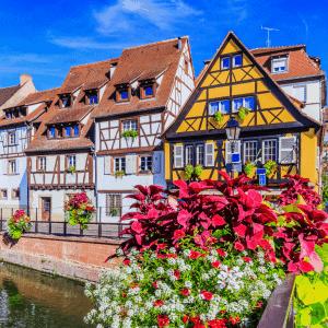 Alsace Blooom trousses de toilette de voyage et soins d'hygiène